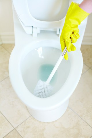 brush cleaning toilet
